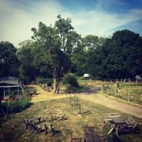 summercamp venue